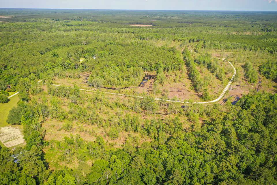 90+ Acre Savannah Plantation Tract main image