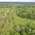 18 Acres of Respite with Creek Frontage thumbnail image