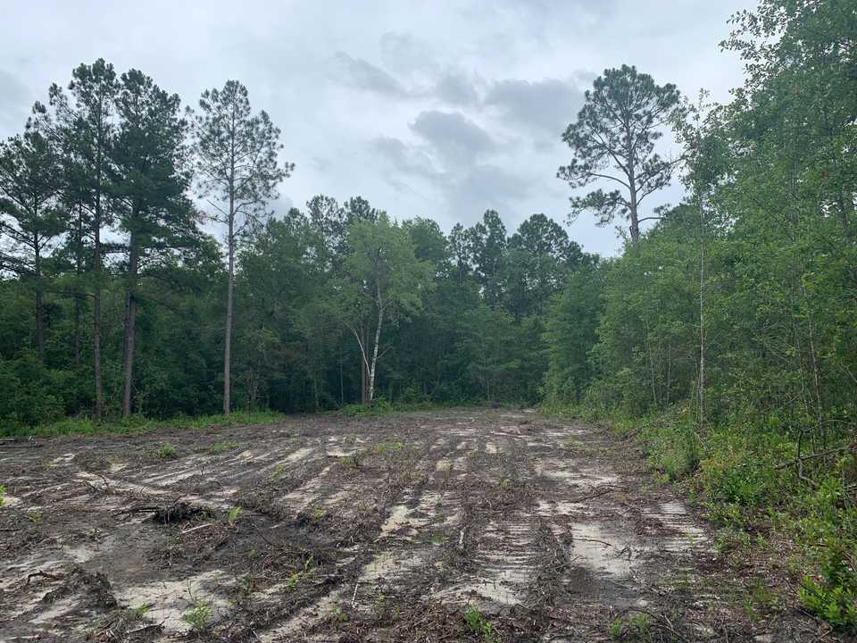Cleared Homesite in Dogwood Acres main image