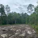 Cleared Homesite in Dogwood Acres thumbnail image