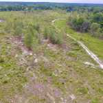 27 Acres Abbeville thumbnail image