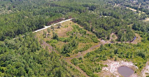 69 Acre Homesite/Farm Tract in Wayne County image