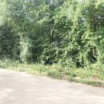 Linden Acres Lots 47, 48 76 & 77 thumbnail image