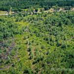 Perfect Homesite or Gentleman Farm thumbnail image