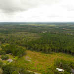 Investment Opportunity 55 Acres  thumbnail image