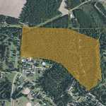 35+/- Acre Rural Tract in City Limits of Screven thumbnail image