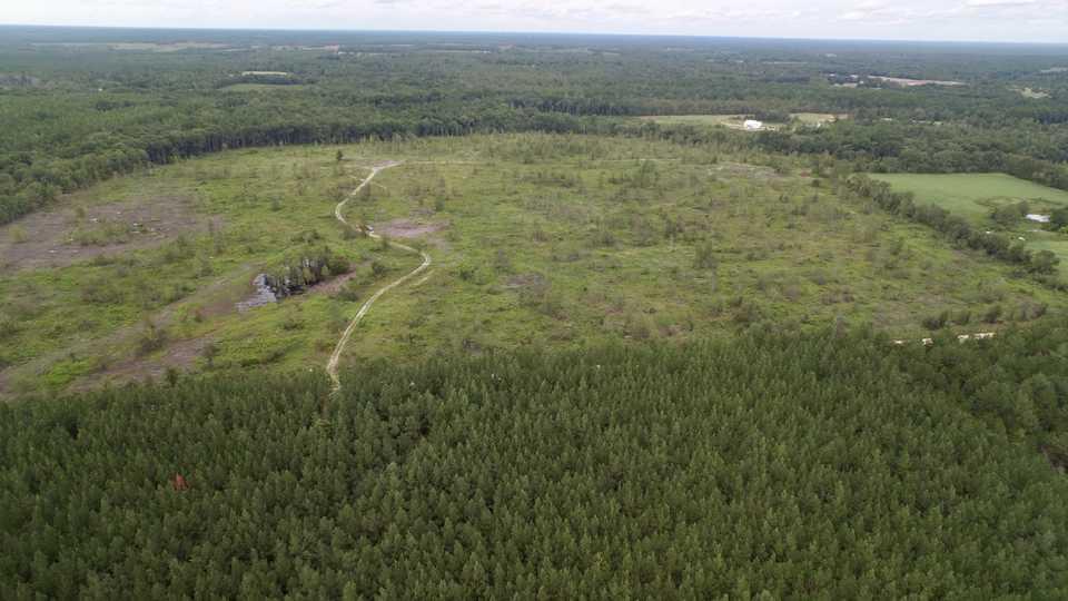 100 Acre Paradise on Clements Creek main image