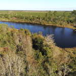 106+ Acres of Possibilities in Bacon County thumbnail image