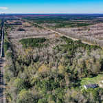 31 Acres located in Long County.  Great Investment or Recreational Property thumbnail image