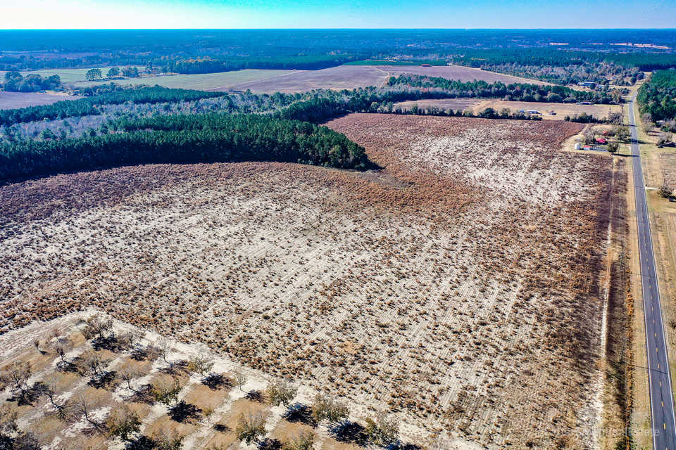 Great Farmland and Timber Tract 126 Acres main image