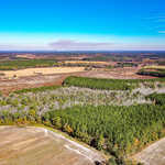 Great Farmland and Timber Tract 126 Acres thumbnail image