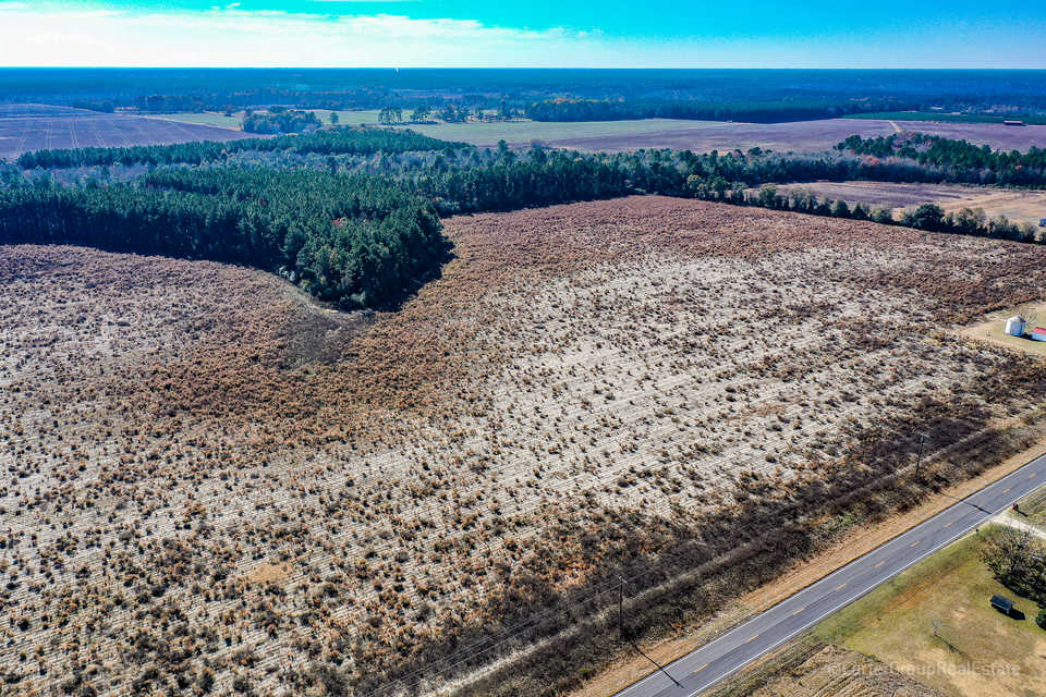 Great Investment Tract 1 60 Acres main image