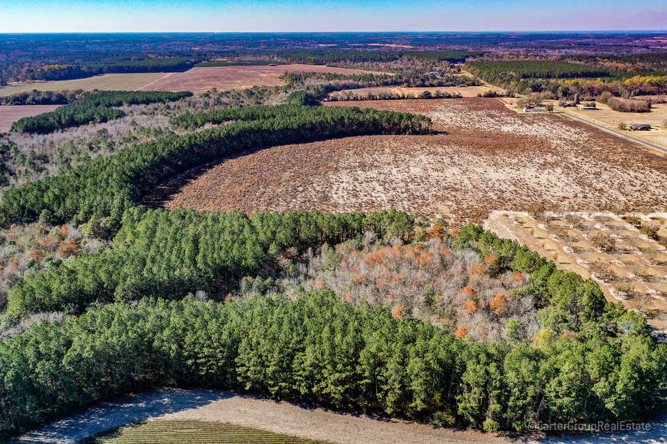 Tract 2 66 Acres Great Farm and Hunting Land main image
