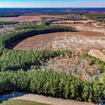 Tract 2 66 Acres Great Farm and Hunting Land image