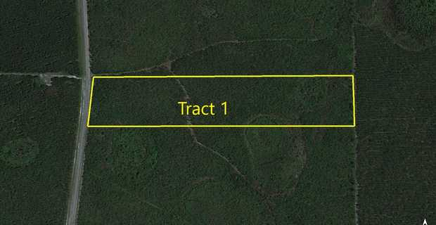 25 Acres on Suwannee Chapel Rd image