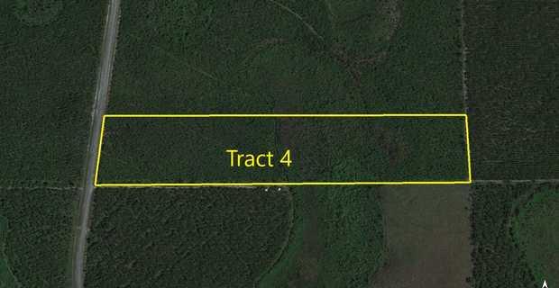 Tract 4- 25 Acres on Suwannee Chapel Rd image