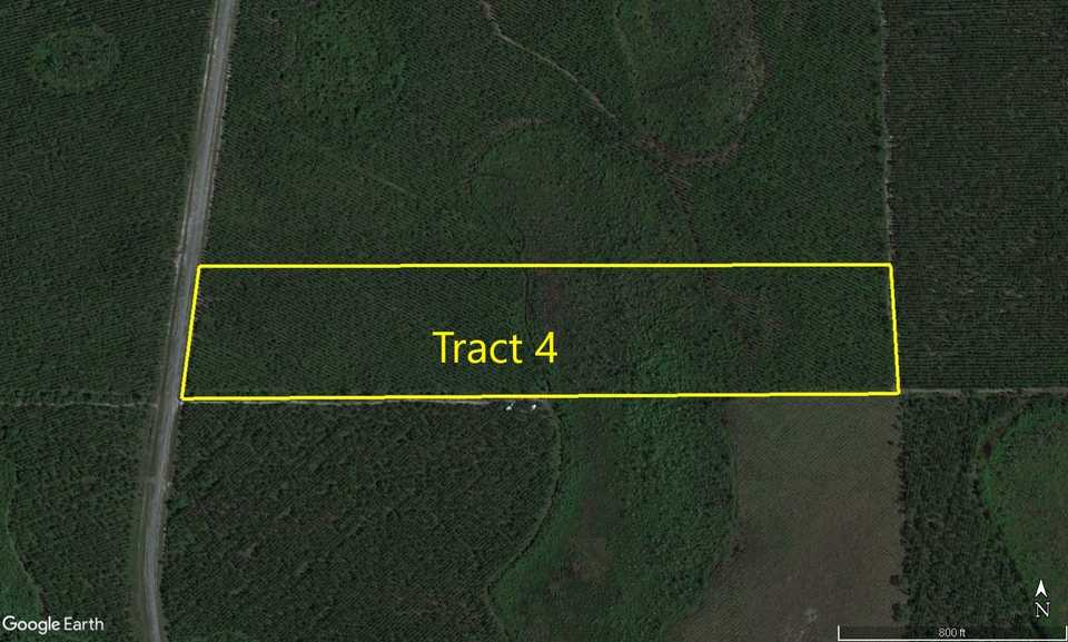 Tract 4- 25 Acres on Suwannee Chapel Rd main image