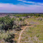 44+ Acres Jesup, GA image