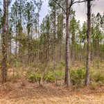 22 Acres Hwy 144 thumbnail image