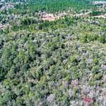 0 Hortense Rd Wayne County thumbnail image