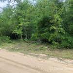 99 Linden Rd thumbnail image