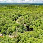 108 Acres Satilla River Retreat thumbnail image