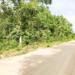 8 Lots in Linden Acres Subdivision image