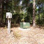 667 Sandy Run Rd thumbnail image