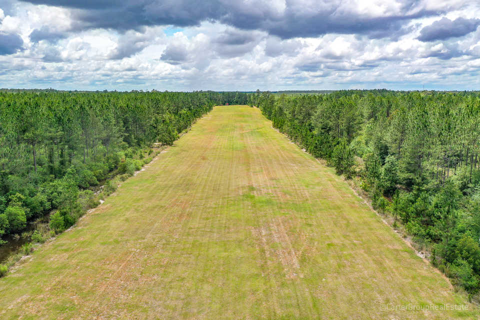 Timber and Hunting Tract with Landing Strip in Screven, GA main image