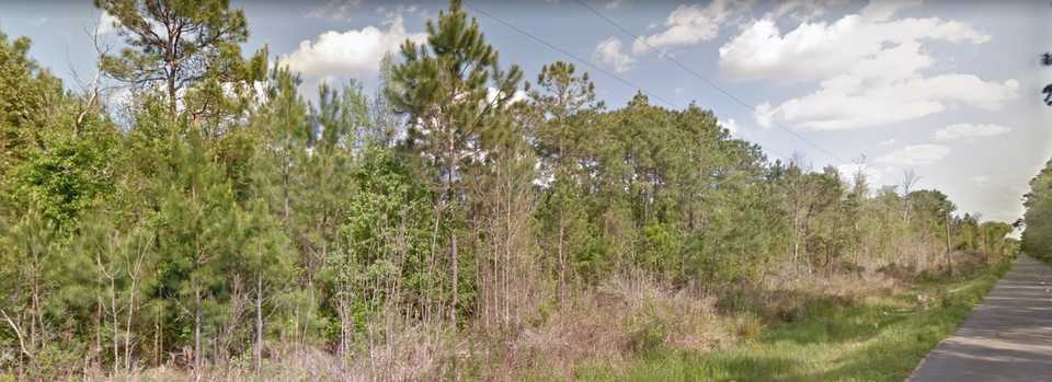 Homesite in Glynn County with 34+/- Acres main image