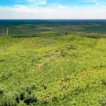 99 Acre Ware County Deal! thumbnail image