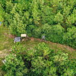 127 Acre Hunting and Timber Investment thumbnail image