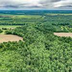 290 Acre Little Satilla Creek Plantation!  image