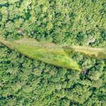 290 Acre Little Satilla Creek Plantation!  thumbnail image