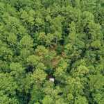 65 Acre Paradise on Red Bluff Creek! thumbnail image
