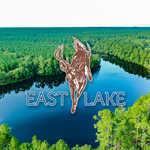 East Lake image