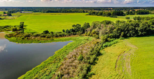 Home, Farm, Pond, and Pasture with this Delightful Southeast Georgia Tract image