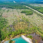 404 Acre Okefenokee Hunting Reserve thumbnail image